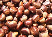 Nutritiva mano seca de la castaña, Comida china toda la venta de la castaña