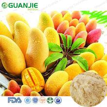 High Quality Pure Organic Mango Juice Powder