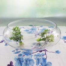 Flat shape clear wide mouth glass fish bowl wholesale/glass bonsai Vase