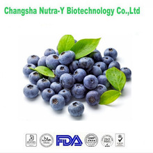 Totally natural Bilberry Extract for Healthy Eyes