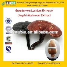 100% Natural Broken-Wall Ganoderma Powder/Ganoderma Extract from GMP Manufacture