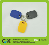 silicone Rfid Key Tag with ISO 14443A and LF 125Khz and HF 13.56MHz rfid key tag for blank pet tags