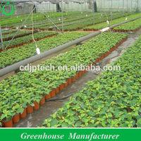 Greenhouse Film Fastening , Anti-High Wind