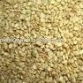 Sesame Seeds Indian origin New Crop 2014-15