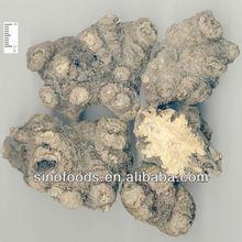 Chuan xiong-Rhizoma Chuanxiong/pure herbs/chinese herb medicine/drug