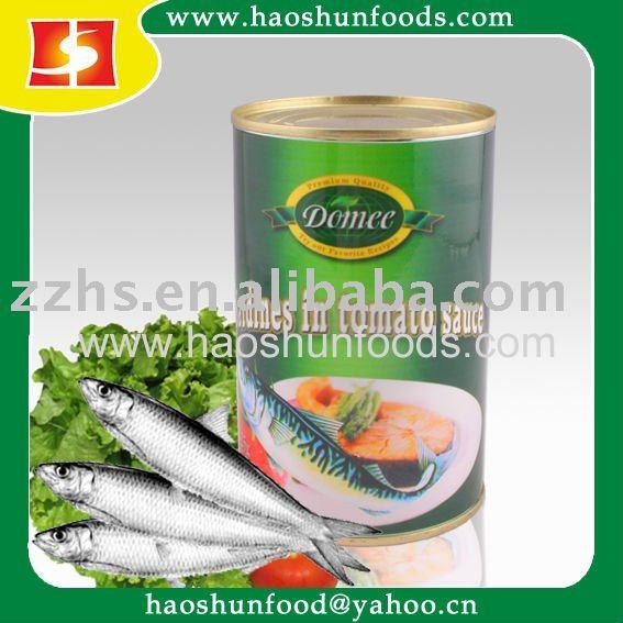 Canned Sardine Fish, Sardine Fish, Canne
