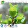 Green Tea Extract Softgel Capsule Healthcare Best Choice