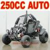 Automatic 250cc Off Road Kart