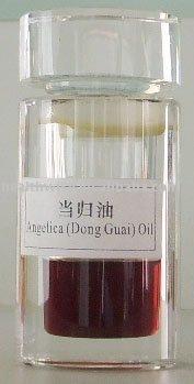 Dong Quai extract ,Ligustilide 35%