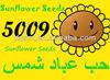 sunflower BIG size 5009