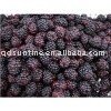2012 new crop dried mulberry fruit
