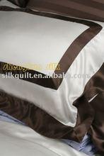 Silk Pillow & Pillow case/Cushion