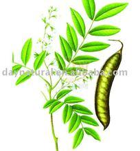 Chinese Honeylocust Extract Honeylocust Gleditsia Sinensis Triterpene Saponins
