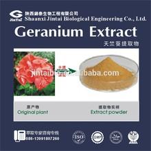 105-41-9 high quality 10:1 pelargonium sidoides extract