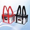 DRY surface aluminium foil cooler bag for frozen(Gre-031923)