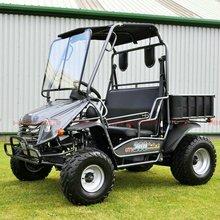 150cc Side by Side UTV, Utility Terrain Vehicle (UTV200)