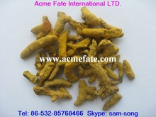 Chinese spice,turmeric finger