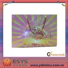 LED flashing bag/promotion lighting bag
