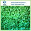 Chinese Green Capsicum Frozen Diced Pepper