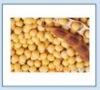 Soybean Isoflavone 40% 80%
