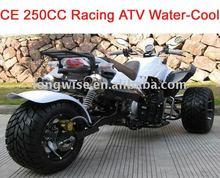 250CC CE Racing ATV LWATV-250WL