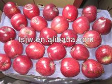 fresh apple price sweet huaniu apples