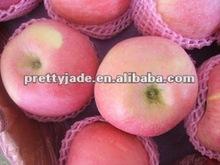 China wholesale Fuji apple