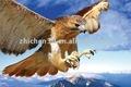tridimensional 3d eagle fotos