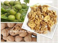walnut without shell/walnut meat/walnut kernel