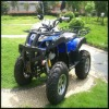 new 250cc quad bike/ATV