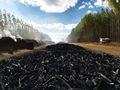 Nicaragua de eucalipto& blanco negro de carbón para la exportación