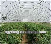 PE plastic clear cover film for Agriculture,Greenhouse,Horticulture use.