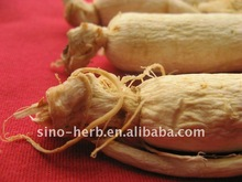 Panax Ginseng Root and Extract