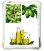 1-100TPD Automatic Olive Oil Production Line