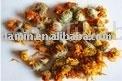 Chrysanthemum extract powder 100% plant extract