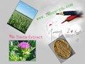 Der heilpflanze mariendistel-extrakt silymarin silibinin und mit