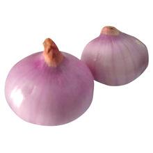 Onion Factory