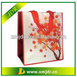 Wholesale Hot Sale Non Woven PP Shopping Bags