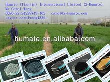 Foliar Fertilizer Fulvic Acid 80% X-Humate Bio Fertilizer