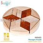 Texagon Tangram ( Tangram, wooden toys,puzzle game)