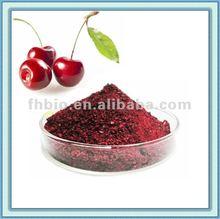 Organic Cherry Powder
