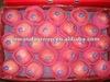 2013 crop Yantai fresh red fuji delicious apple