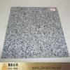 Polished granite wall coating G640