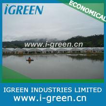 chinese design plastic film vegetable greenhouse