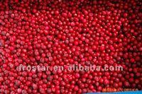 Fresh Frozen / IQF Wild Lingonberry