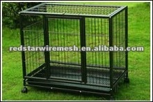 Outdoor metal dog kennel with common wall