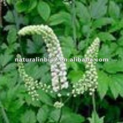 Natural Black cohosh Extracts