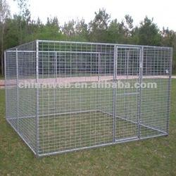 large dog kennels