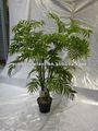 palma plantas artificiales de interior y treesInstruction