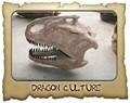 el museo de dinosaurios fósiles cabeza modelo